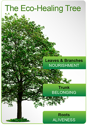 Large green tree with three labels. The first says Leaves and Branches - Nourishment. The second says Trunk - Belonging. The third says Roots - Aliveness.