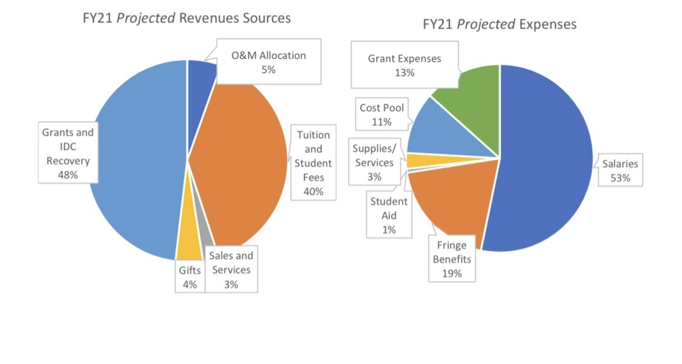 FY21 Projected expenses and revenues
