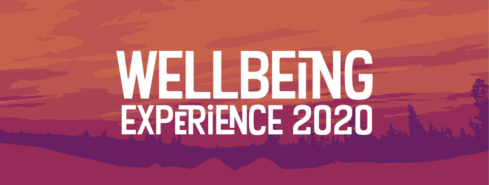 Wellbeing Experience 2020