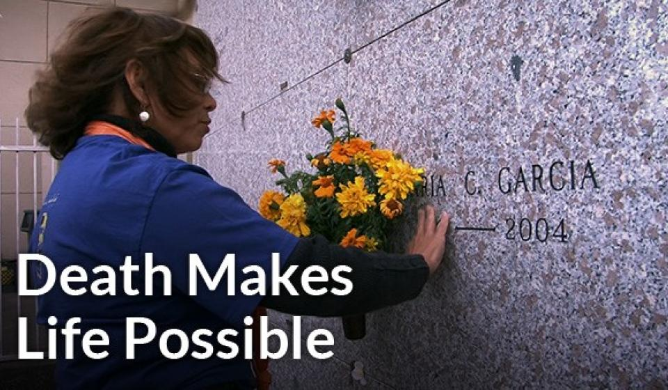 death-makes-life-possible