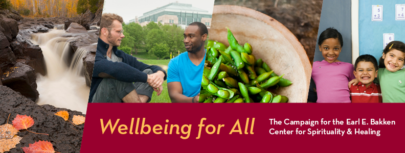 wellbeing for all Banner
